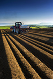 Potato Farming in Northern Ireland Photographic Print by Chris Hill