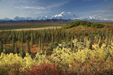 Scenic View of Mt. Mckinley and the Alaska Range with Taiga and Fall Colors Photographic Print by  Design Pics Inc