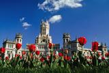 Palacio De Comunicaciones at Plaza De Cibeles Photographic Print by  Design Pics Inc