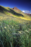 Setting Sun Light and Grass on the Backside of the Maroon Bells Mountains Photographic Print by Keith Ladzinski