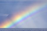 Rainbow over the Ocean Fotografisk tryk af Rich Reid