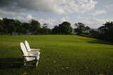 A Manicured Hotel Lawn in Port Antonio Photographic Print by Matt Propert