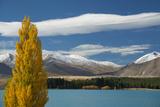 A Fall Scene on Lake Tekapo, South Island Photographic Print by Michael Melford