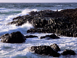 Giant's Causeway on the North Coast of Northern Ireland Photographic Print by Chris Hill