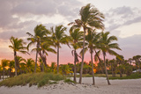 A Red Glowing Sky Backlights Palm Trees at Sunset on the Beach in Key Biscayne Fotografisk tryk af Mike Theiss