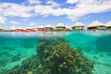 A Woman Kayaking over Coral Heads at a Resort with Over-The-Water Bungalows Photographic Print by Mike Theiss