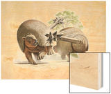 Giant Glyptodonts Fight Using their Spiked Tails Wood Print by Raul D. Martin