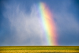 A Thunderstorm Produces a Vibrant Rainbow Photographic Print by Jim Reed