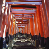 Red Torii Arches over Steps at Inari Temple Reproduction photographique par  Design Pics Inc