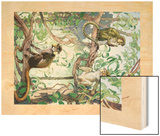 Painting of Mustache and Talapoin Guenon Monkeys in Treetops Wood Print by Elie Cheverlange