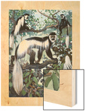 Painting of Guereza Monkeys in Treetops Wood Print by Elie Cheverlange