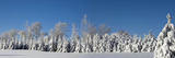 Canadian Winter Panorama; Foster Quebec Canada Photographic Print by  Design Pics Inc