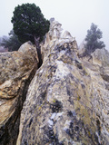Foggy Morning at Garden of the Gods, Colorado Photographic Print by Keith Ladzinski