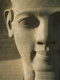 Detail of Pharaoh Head Photographic Print by  Design Pics Inc