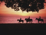 Riding Horses on the Beach at Sunset Photographic Print by  Design Pics Inc