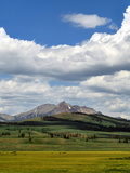 A Summer Landscape in Yellowstone National Park, with Mountains, Meadows, and Fluffy Clouds Photographic Print by Babak Tafreshi