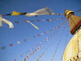 Buddha Stupa Photographic Print by  Design Pics Inc