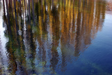 Colors of Fall Leaves are Reflected in the Surface of a Pond Photographic Print by Babak Tafreshi