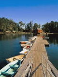Old Wooden Pier and Boats in Harbor Photographic Print by  Design Pics Inc