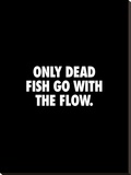 Only Dead Fish Go With the Flow Stretched Canvas Print by Brett Wilson