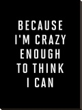 Because Im Crazy Enough to Think I Can BLK Stretched Canvas Print by Brett Wilson
