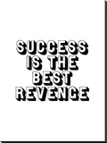 Success is the Best Revenge Stretched Canvas Print by Brett Wilson
