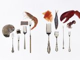 Various Forks Used for Oysters, Caviar, Sushi, Shrimp, Fish, Sardines, Lobster and Octopus Fotografisk tryk af Rebecca Hale