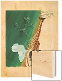 Drawings of Giraffe, Okapi, and their Prehistoric Ancestors Wood Print by William H. Bond