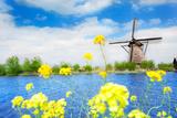 Old Windmill in Kinderdijk-Elshout Netherlands Photographic Print by  SerrNovik