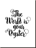 The World is Your Oyster Wht Stretched Canvas Print by Brett Wilson