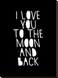 I Love You To The Moon And Back Stretched Canvas Print by Brett Wilson