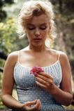 Marilyn Monroe Flower Poster