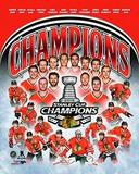 Chicago Blackhawks 2015 Stanley Cup Champions team composite Photo