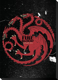 Game Of Thrones Targaryen Sigil Canvas Banner Stretched Canvas Print