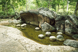 Prehistoric Landscape Photographic Print by Yury Zap