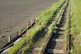 Forgotten Railway - 26 Photographic Print by  akorotaev