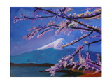 Marvellous Mount Fuji with Cherry Blossom in Japan Posters by Markus Bleichner