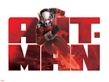 ANT-MAN Wall Decal Autocollant