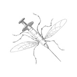 Mosquito Needle - Cartoon Premium Giclee Print by John O'brien