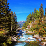Rapid Mountain Stream of Coniferous Forests. Pastoral in the Alpine Mountain Valley in Austria. Cas Photographic Print by  kavram