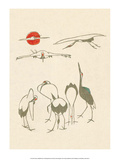 Japanese Drawing of Flying Cranes Prints by Kitao Masayoshi