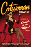 Dc Comics Catwoman Bombshell Posters