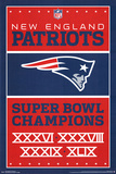 New England Patriots- Champions 2015 Poster