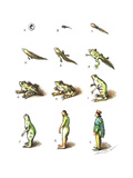 Evolution of a tadpole to a prince. - Cartoon Premium Giclee Print by John O'brien
