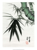Watercolor of Green Bamboo Posters