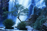 Australia Waterfall in Forest Photographic Print by  Nosnibor137