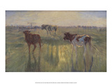 Cows in Sunset, 1892 Prints by Theodor Philipsen