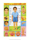 Indian Educational Chart - Parts of the Body Posters