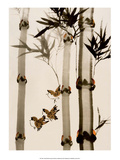 Birds among Bamboo Poster