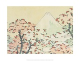 Katsushika Hokusai - Mount Fuji seen through Cherry Blossom Plakát